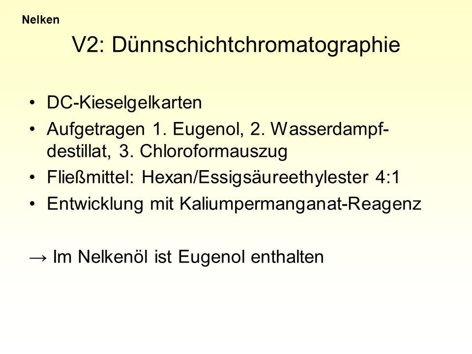V2: Dünnschichtchromatographie DC-Kieselgelkarten Aufgetragen 1. Eugenol, 2. Wasserdampf- destillat, 3. Chloroformauszug Fließmittel: Hexan/Essigsäure