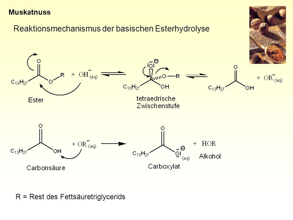 Reaktionsmechanismus der basischen Esterhydrolyse R = Rest des Fettsäuretriglycerids