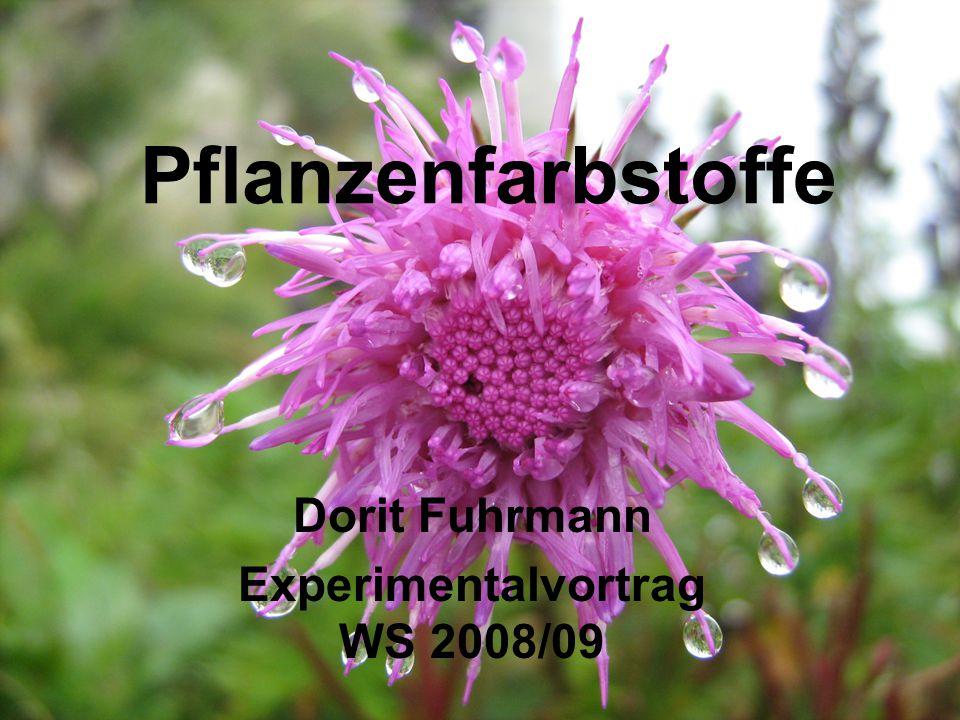 2 1.Theorie Farbe 2. Pflanzenfarbstoffe 3. Carotinoide 4.
