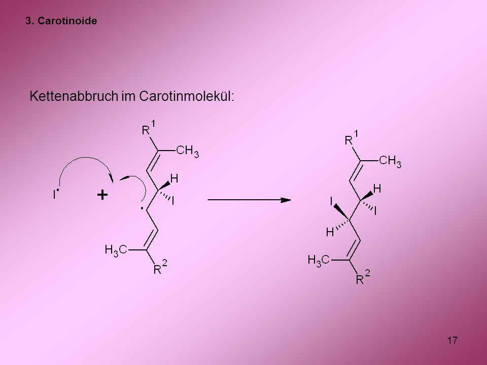 17 Kettenabbruch im Carotinmolekül: 3. Carotinoide