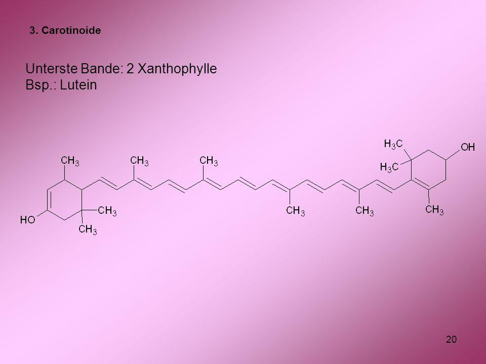 20 Unterste Bande: 2 Xanthophylle Bsp.: Lutein 3. Carotinoide