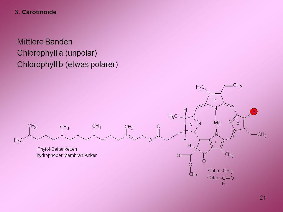 21 Mittlere Banden Chlorophyll a (unpolar) Chlorophyll b (etwas polarer) 3. Carotinoide
