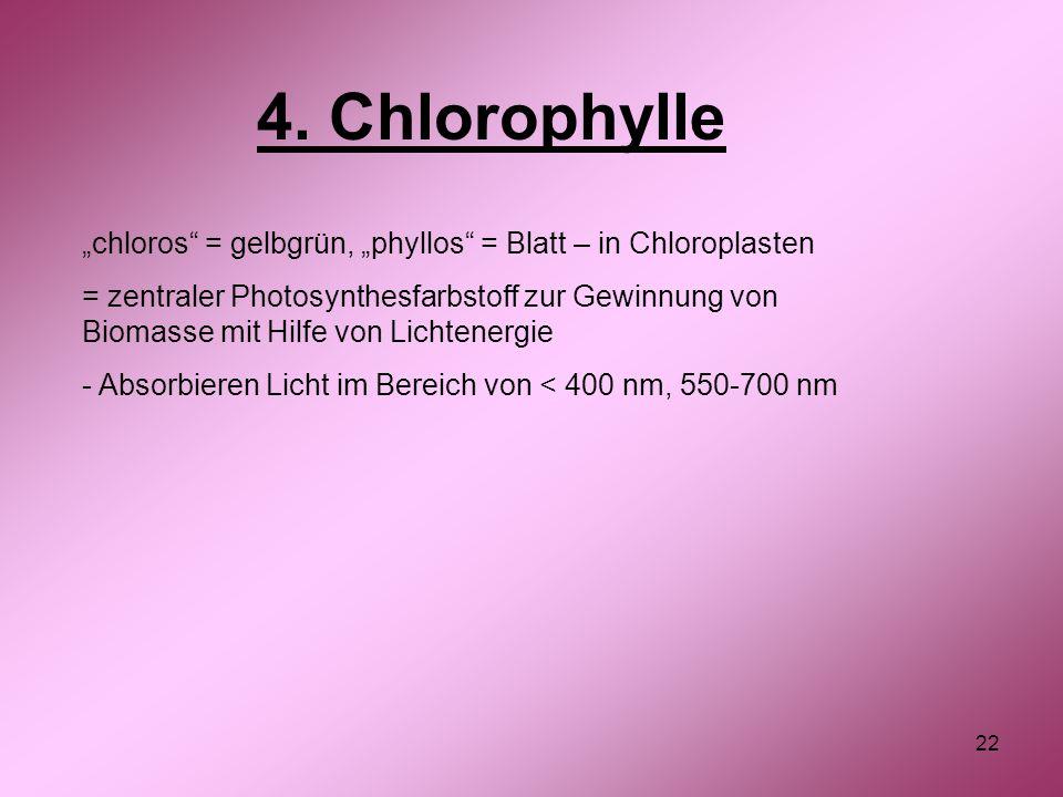 """22 4. Chlorophylle """"chloros"""" = gelbgrün, """"phyllos"""" = Blatt – in Chloroplasten = zentraler Photosynthesfarbstoff zur Gewinnung von Biomasse mit Hilfe v"""