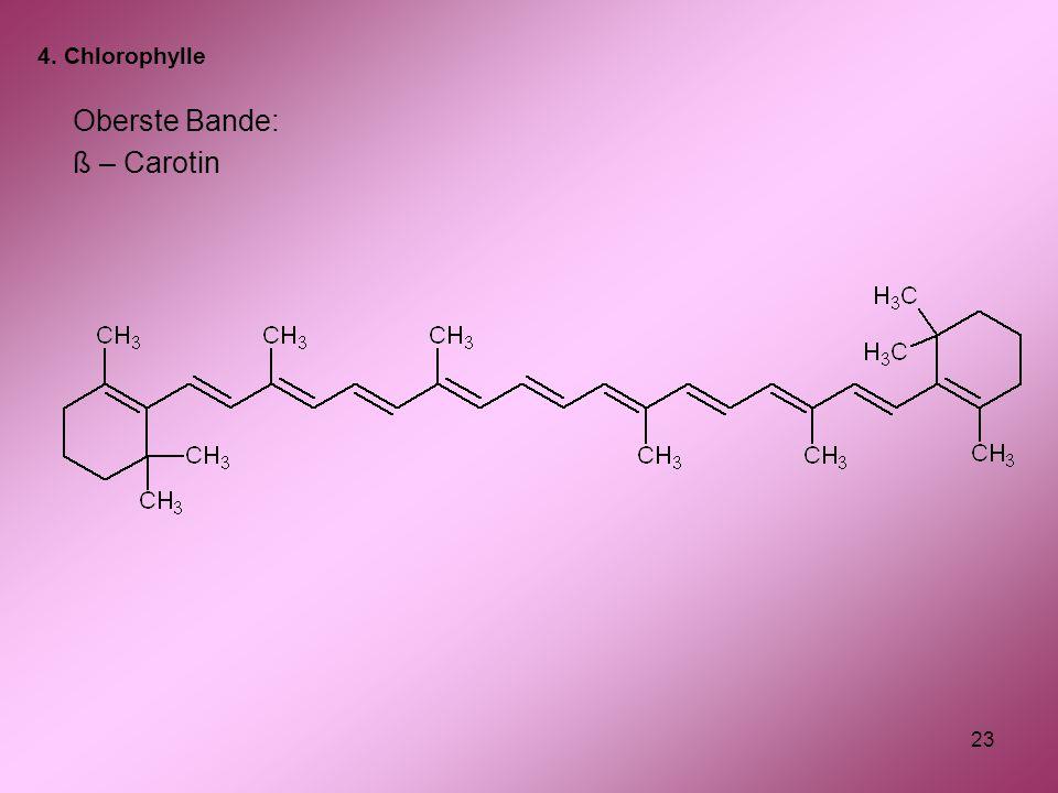 23 Oberste Bande: ß – Carotin 4. Chlorophylle