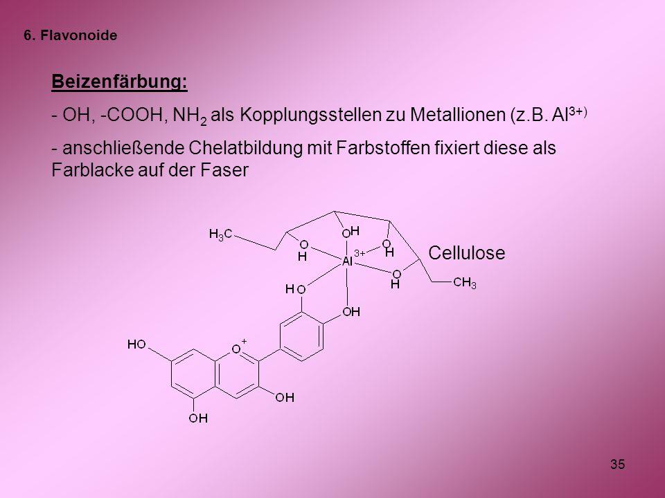 35 Beizenfärbung: - OH, -COOH, NH 2 als Kopplungsstellen zu Metallionen (z.B. Al 3+) - anschließende Chelatbildung mit Farbstoffen fixiert diese als F