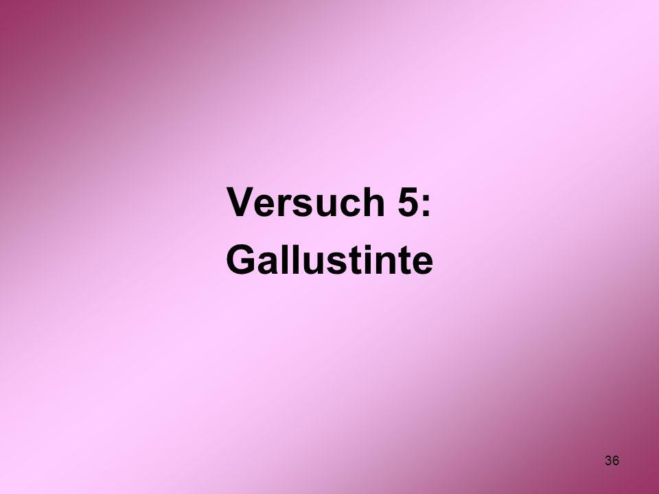 36 Versuch 5: Gallustinte