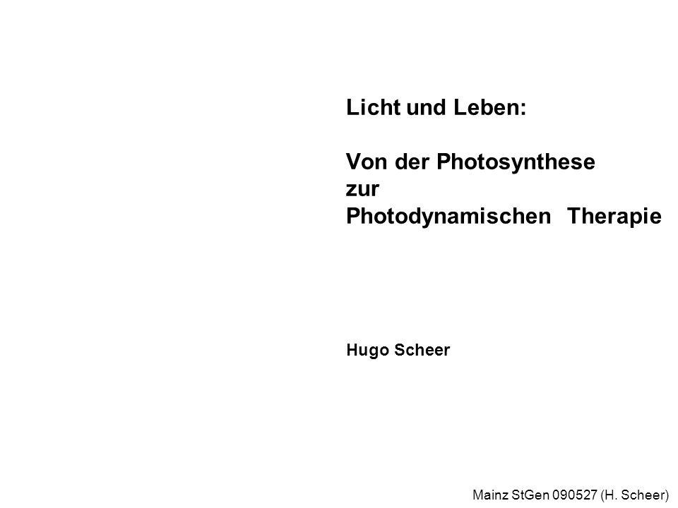 Mainz StGen 090527 (H. Scheer) Primärprozesse der Photosynthese