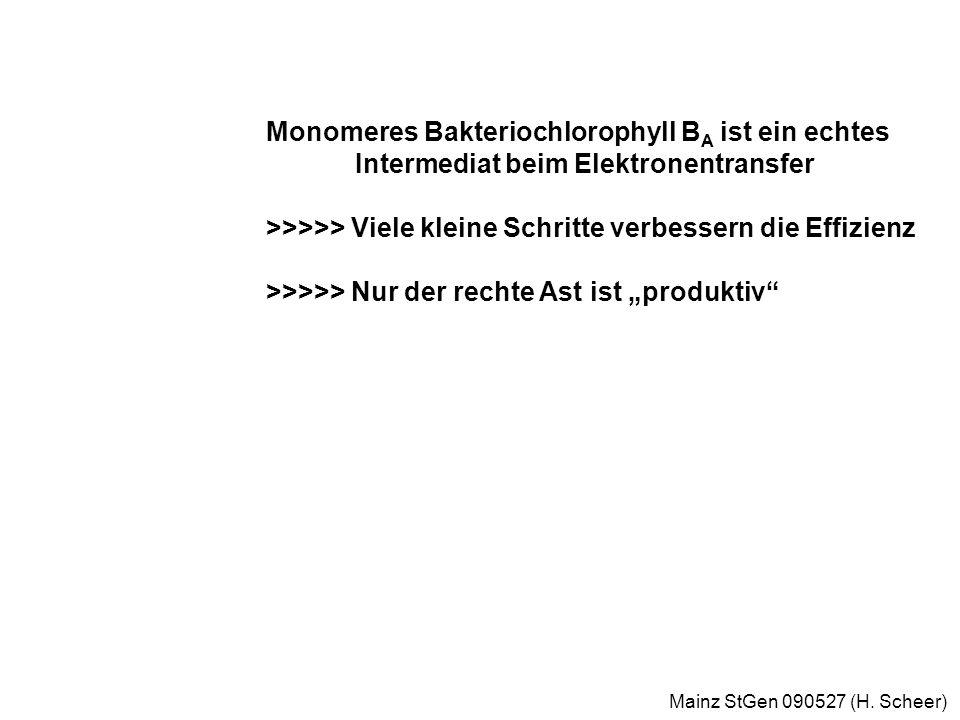 Mainz StGen 090527 (H.Scheer) 3 ps 1 ps 200 ps 150 µs Elektronentransfer im Reaktionszentrum W.