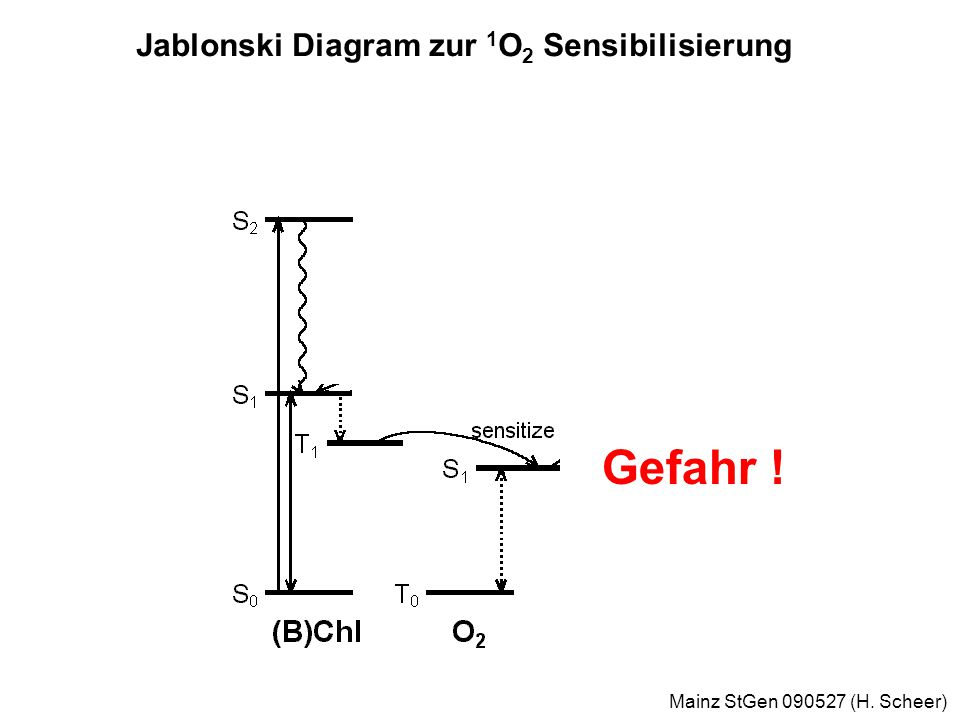 Mainz StGen 090527 (H. Scheer) Sonne als Energiequelle: 1,5 kW/qm