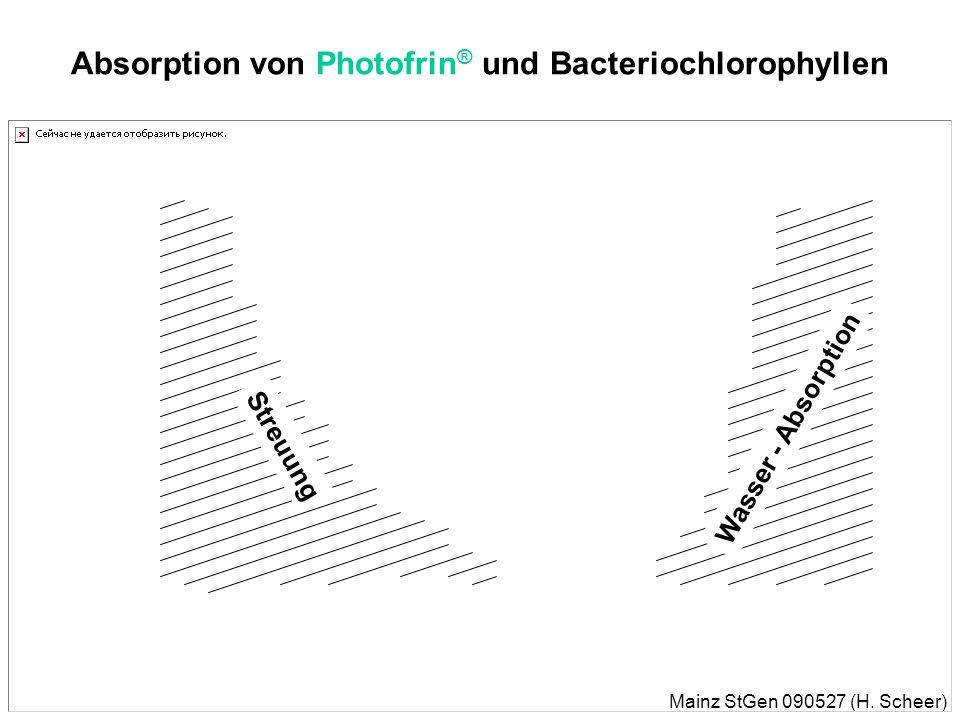 Mainz StGen 090527 (H. Scheer) Natürliche und künstliche Photosensibilisatoren