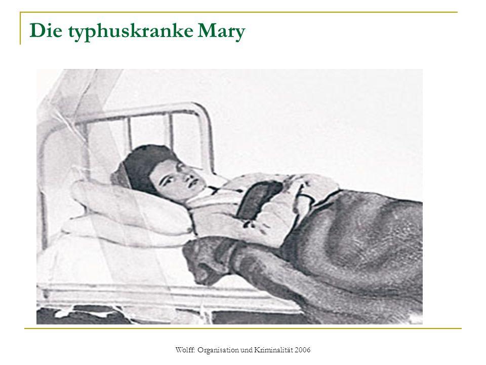 Wolff: Organisation und Kriminalität 2006 Die typhuskranke Mary
