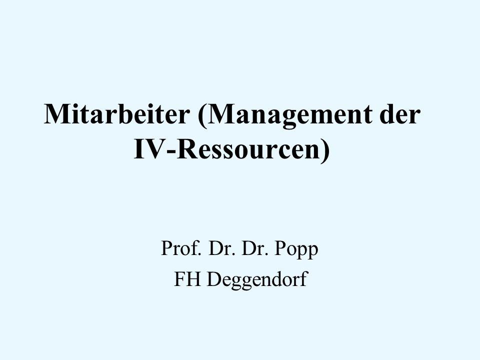 Mitarbeiter (Management der IV-Ressourcen) Prof. Dr. Dr. Popp FH Deggendorf