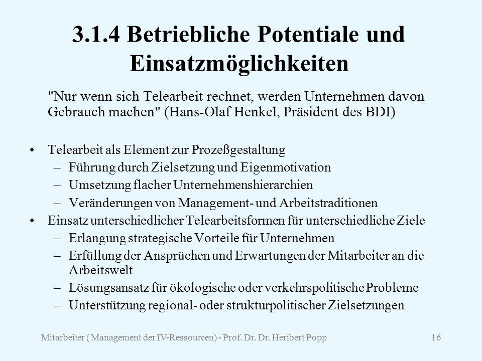 Mitarbeiter ( Management der IV-Ressourcen) - Prof. Dr. Dr. Heribert Popp16 3.1.4 Betriebliche Potentiale und Einsatzmöglichkeiten