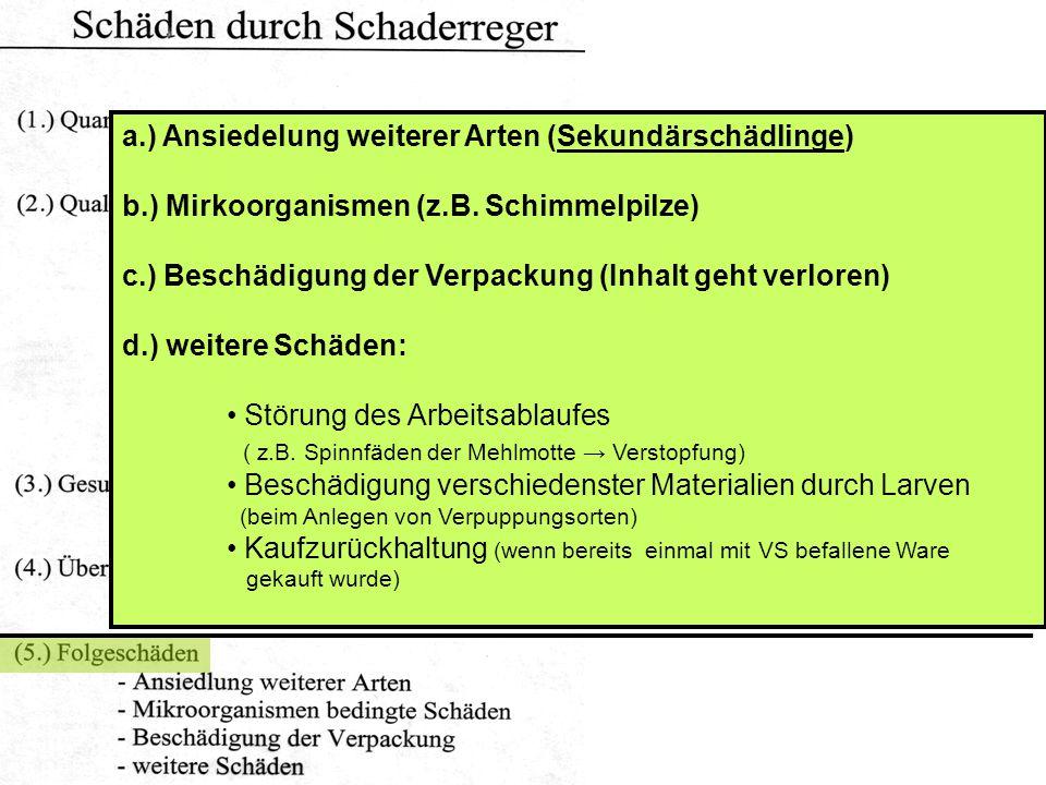 b.) Mirkoorganismen (z.B.