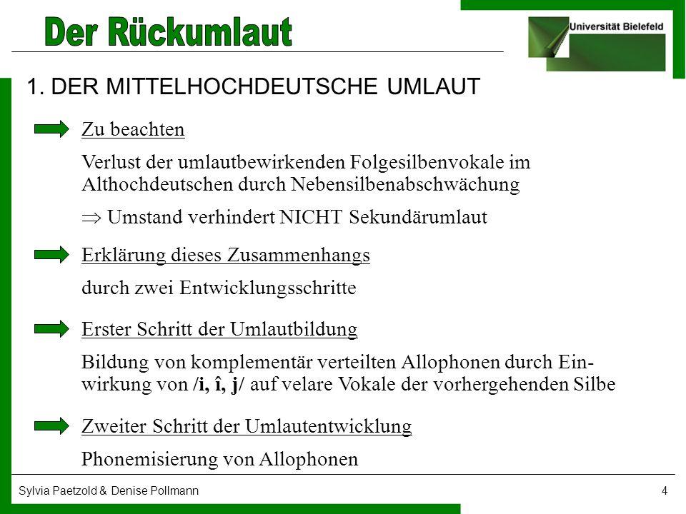 Sylvia Paetzold & Denise Pollmann4 1. DER MITTELHOCHDEUTSCHE UMLAUT Zu beachten Verlust der umlautbewirkenden Folgesilbenvokale im Althochdeutschen du