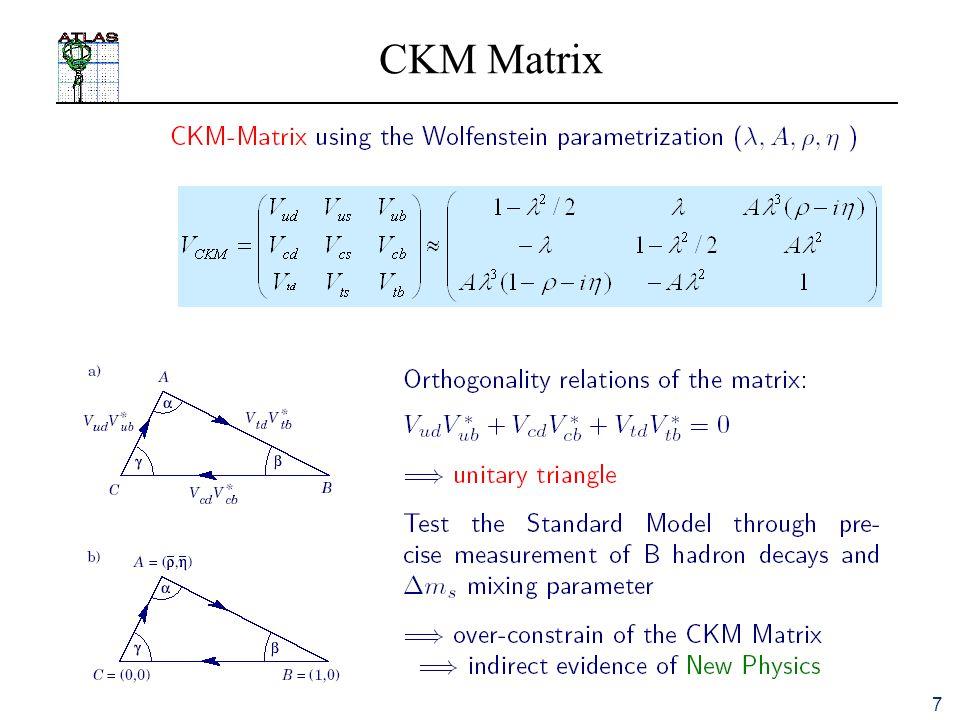 7 CKM Matrix