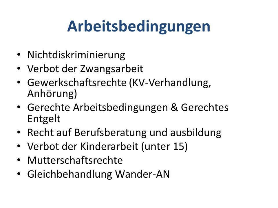 Sozialcharta: Sozialpolitik als Menschenrechtspolitik .