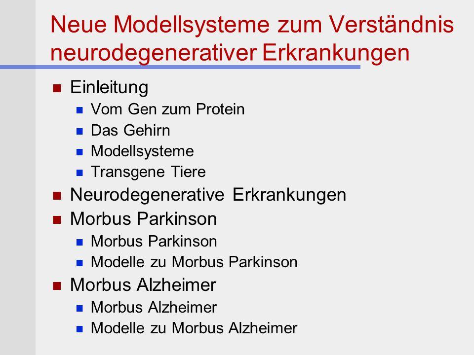 Neue Modellsysteme zum Verständnis neurodegenerativer Erkrankungen Einleitung Vom Gen zum Protein Das Gehirn Modellsysteme Transgene Tiere Neurodegene