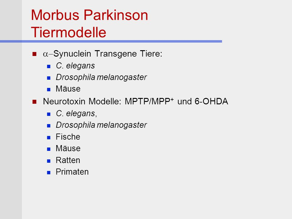 Morbus Parkinson Tiermodelle  Synuclein Transgene Tiere: C. elegans Drosophila melanogaster Mäuse Neurotoxin Modelle: MPTP/MPP + und 6-OHDA C. elega