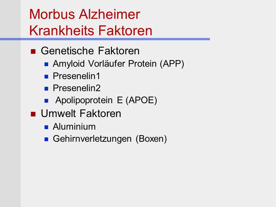 Morbus Alzheimer Krankheits Faktoren Genetische Faktoren Amyloid Vorläufer Protein (APP) Presenelin1 Presenelin2 Apolipoprotein E (APOE) Umwelt Faktor
