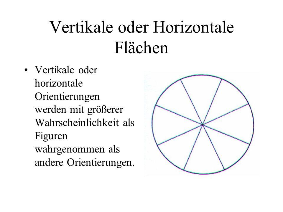 Vertikale oder Horizontale Flächen Vertikale oder horizontale Orientierungen werden mit größerer Wahrscheinlichkeit als Figuren wahrgenommen als ander