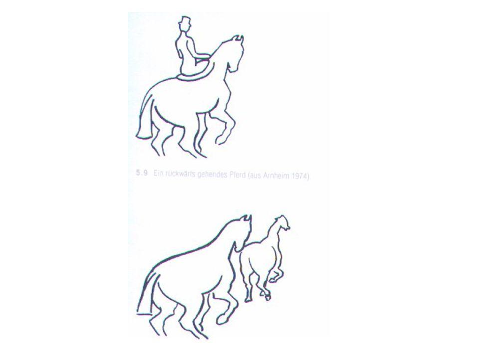 Vertikale oder Horizontale Flächen Vertikale oder horizontale Orientierungen werden mit größerer Wahrscheinlichkeit als Figuren wahrgenommen als andere Orientierungen.