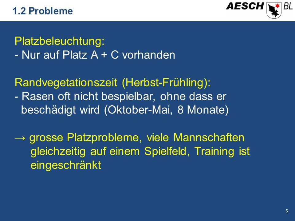1.2 Probleme Platzbeleuchtung: - Nur auf Platz A + C vorhanden Randvegetationszeit (Herbst-Frühling): - Rasen oft nicht bespielbar, ohne dass er besch