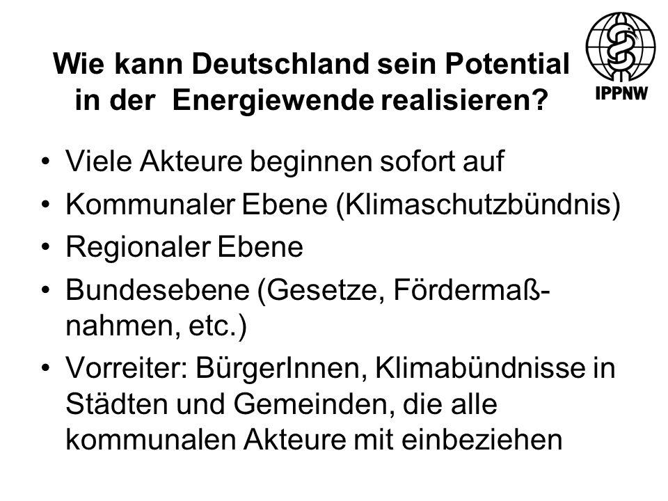 Wie kann Deutschland sein Potential in der Energiewende realisieren.