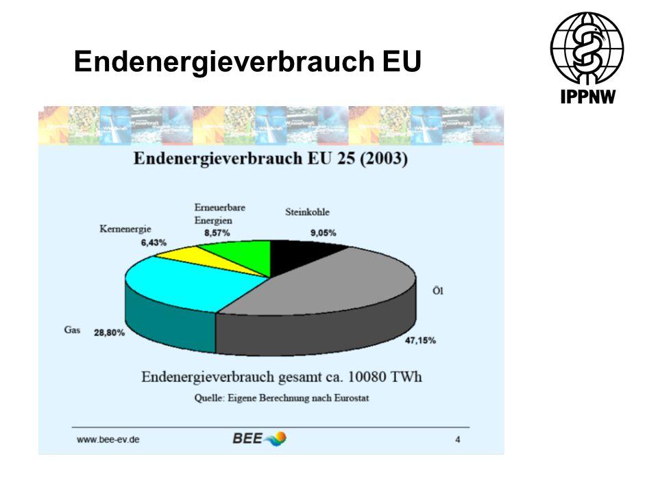 Endenergieverbrauch EU