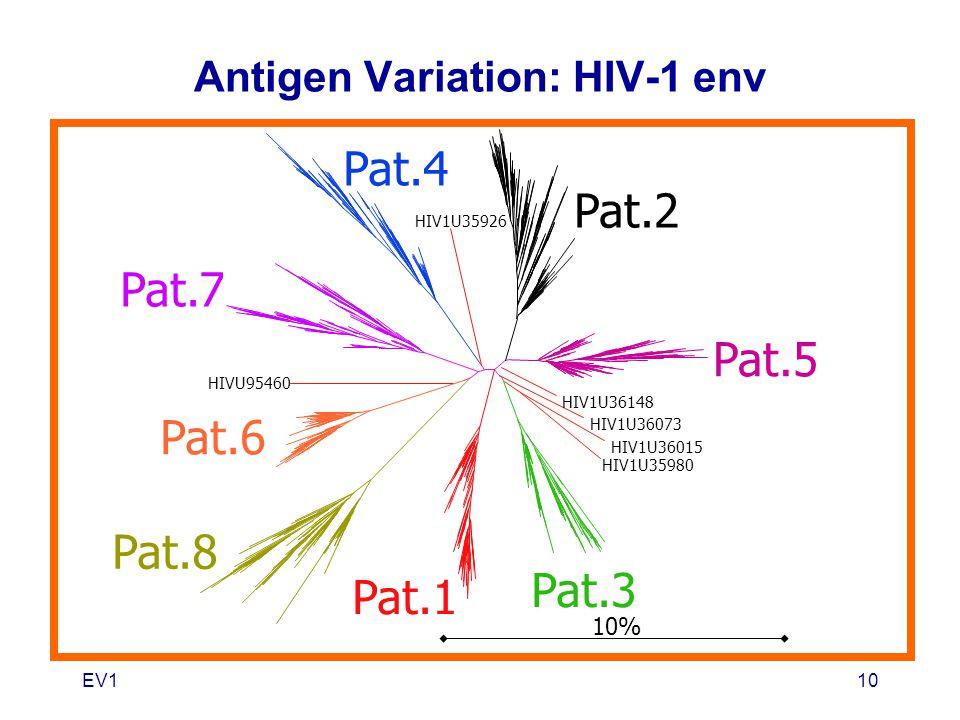 EV110 Pat.7 Pat.4 HIV1U36148 HIV1U36015 HIV1U35980 HIV1U36073 HIV1U35926 HIVU95460 Pat.2 Pat.5 Pat.3 Pat.1 Pat.8 Pat.6 10% Antigen Variation: HIV-1 en