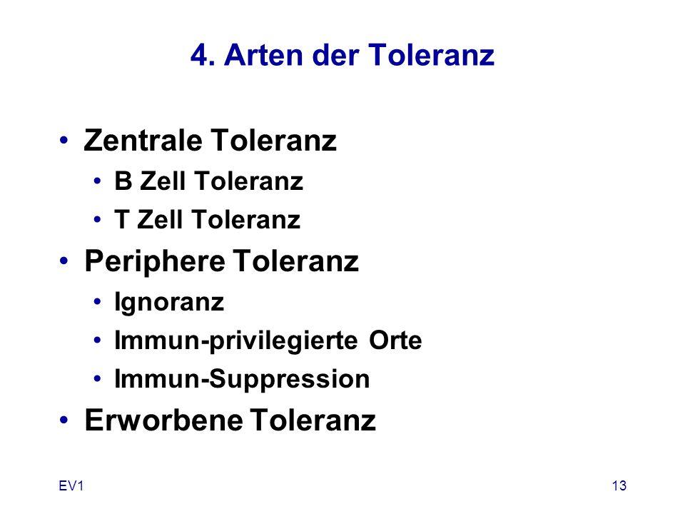 4. Arten der Toleranz Zentrale Toleranz B Zell Toleranz T Zell Toleranz Periphere Toleranz Ignoranz Immun-privilegierte Orte Immun-Suppression Erworbe