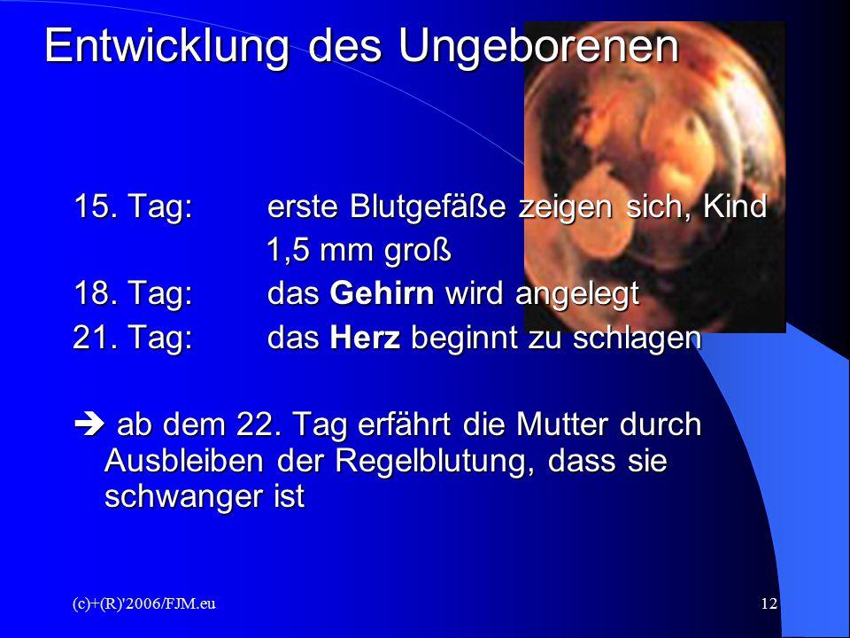 (c)+(R)'2006/FJM.eu11 Entwicklung des Ungeborenen 12 – 24 Stunden nach der sex. Vereinigung:  Verschmelzung von Ei- und Samenzelle (Zygote)  Verschm