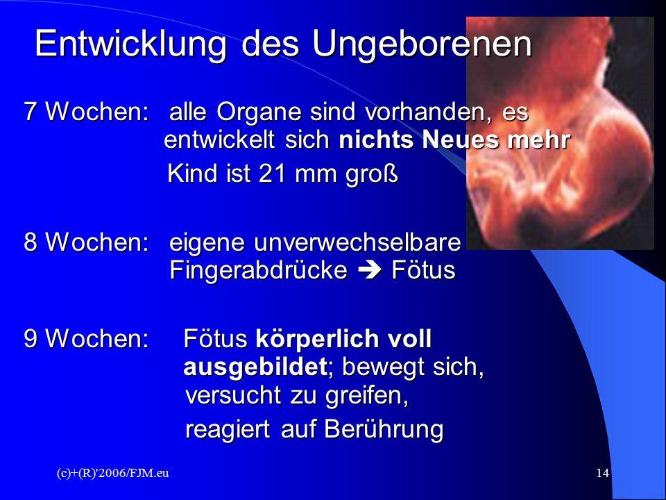 (c)+(R)'2006/FJM.eu13 Entwicklung des Ungeborenen 28. Tag: Kind ist 4,2 mm groß, alle Organsysteme sind angelegt Organsysteme sind angelegt 6 Wochen: