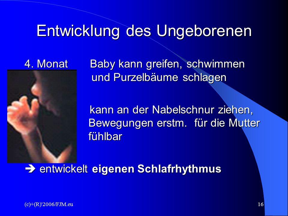 (c)+(R) 2006/FJM.eu15 Entwicklung des Ungeborenen 12.