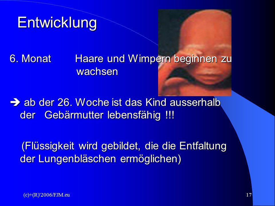(c)+(R)'2006/FJM.eu16 Entwicklung des Ungeborenen 4. Monat Baby kann greifen, schwimmen und Purzelbäume schlagen kann an der Nabelschnur ziehen, Beweg