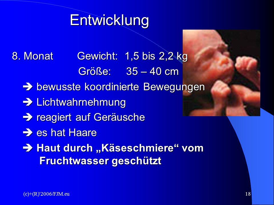 (c)+(R)'2006/FJM.eu17 Entwicklung 6. Monat Haare und Wimpern beginnen zu wachsen  ab der 26. Woche ist das Kind ausserhalb der Gebärmutter lebensfähi