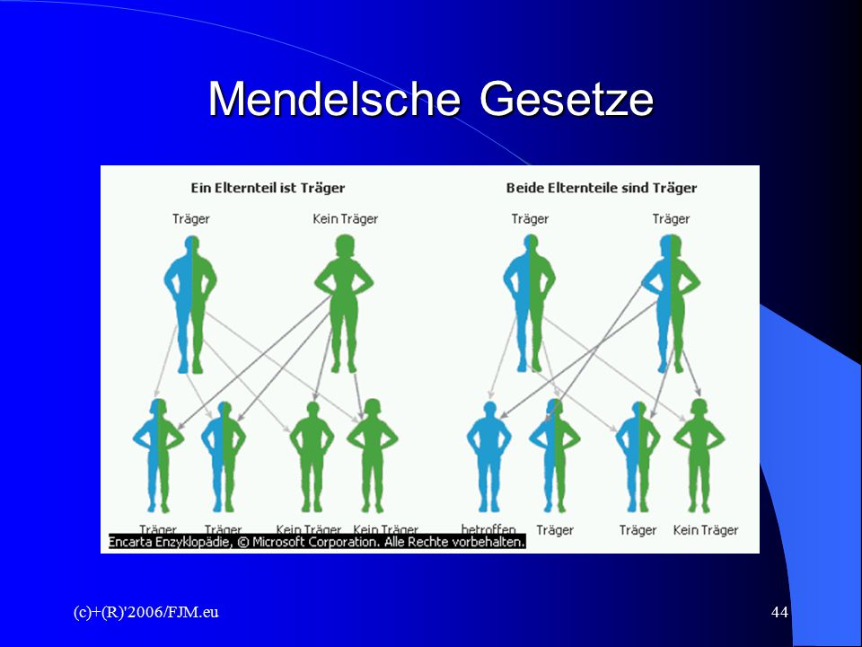 (c)+(R)'2006/FJM.eu43 Präimplantationsdiagnostik I. Definition  genetische Untersuchung von Embryonen vor Übertragung in den Uterus der Frau  Voraus