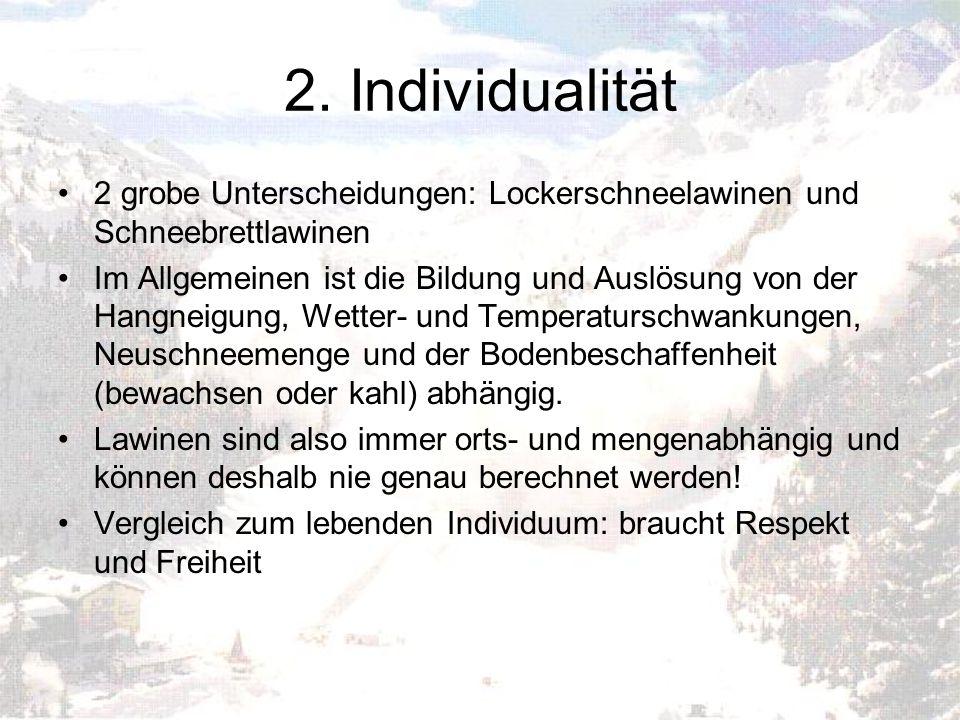 2. Individualität 2 grobe Unterscheidungen: Lockerschneelawinen und Schneebrettlawinen Im Allgemeinen ist die Bildung und Auslösung von der Hangneigun