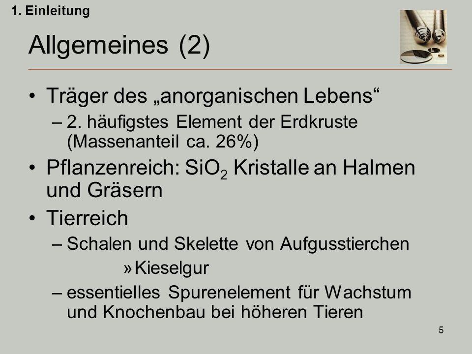 """5 Träger des """"anorganischen Lebens –2.häufigstes Element der Erdkruste (Massenanteil ca."""