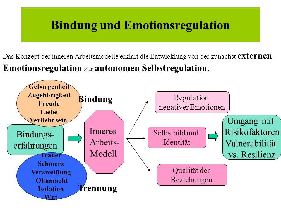 Das Konzept der inneren Arbeitsmodelle erklärt die Entwicklung von der zunächst externen Emotionsregulation zur autonomen Selbstregulation.