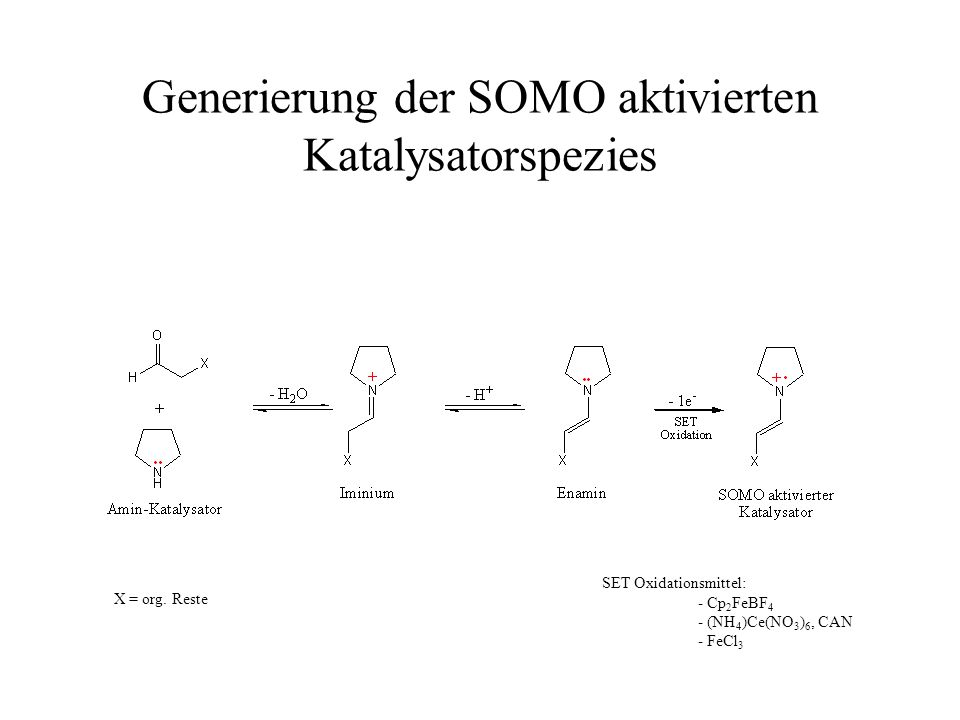 Generierung der SOMO aktivierten Katalysatorspezies X = org. Reste SET Oxidationsmittel: - Cp 2 FeBF 4 - (NH 4 )Ce(NO 3 ) 6, CAN - FeCl 3