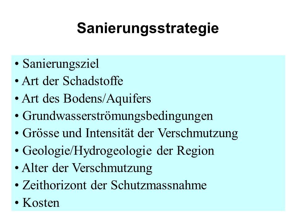 Sanierungsstrategie Sanierungsziel Art der Schadstoffe Art des Bodens/Aquifers Grundwasserströmungsbedingungen Grösse und Intensität der Verschmutzung