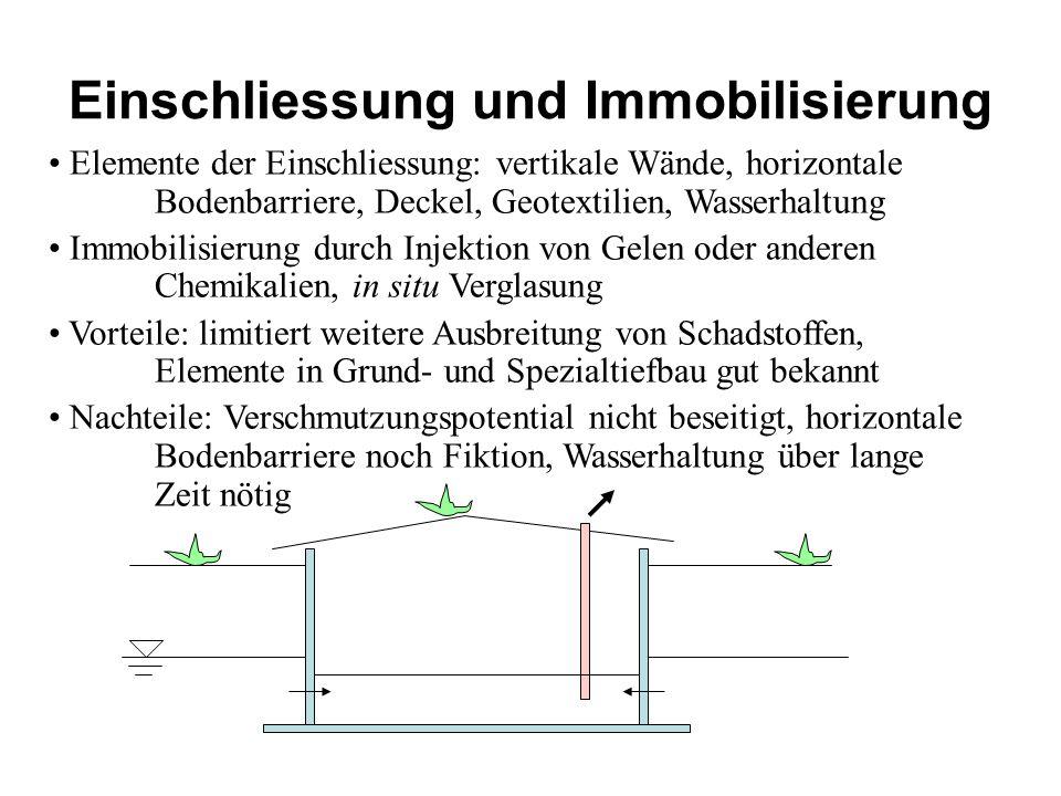 Einschliessung und Immobilisierung Elemente der Einschliessung: vertikale Wände, horizontale Bodenbarriere, Deckel, Geotextilien, Wasserhaltung Immobi