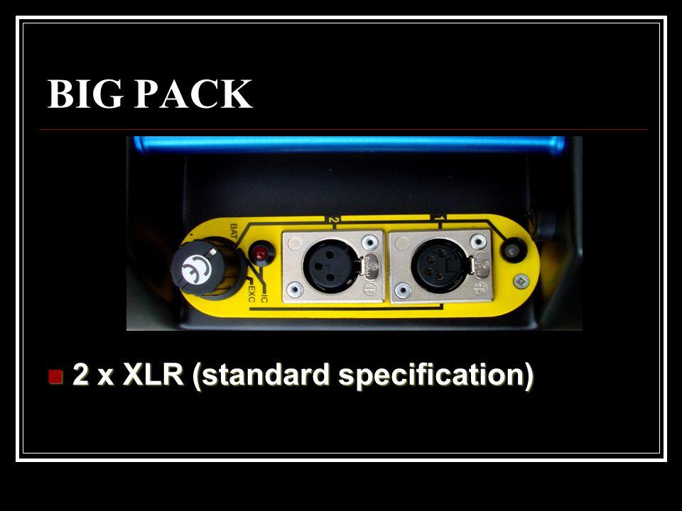 2 x XLR (standard specification)