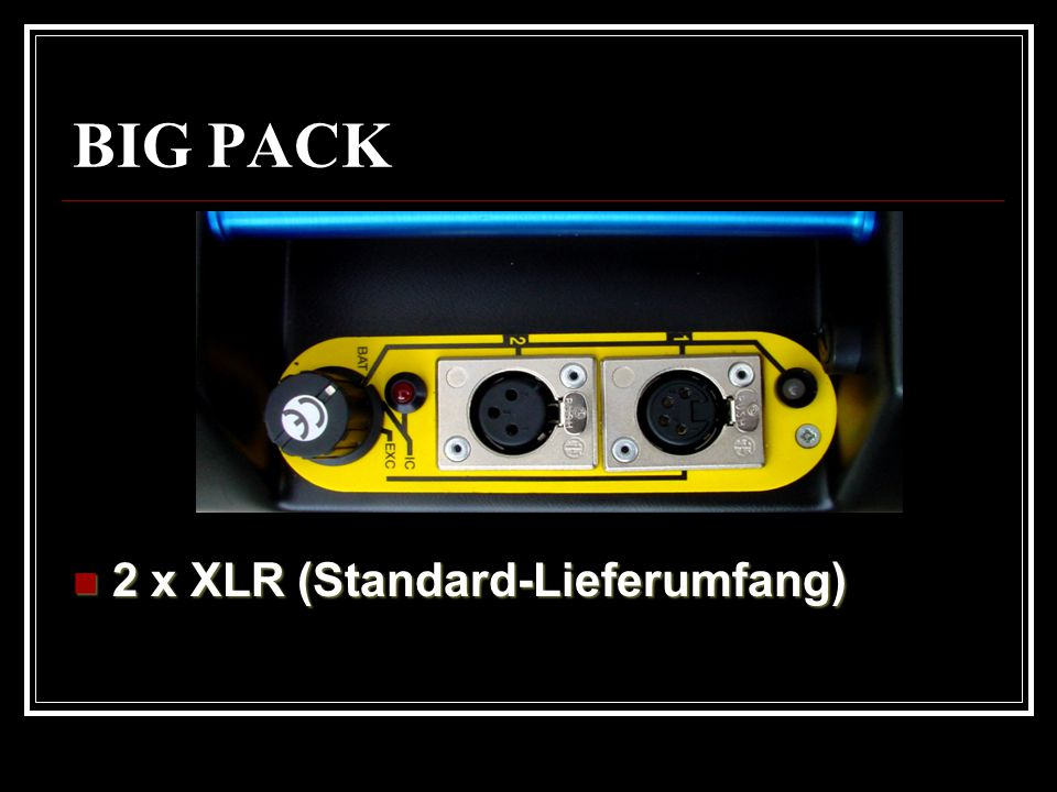 2 x XLR (Standard-Lieferumfang)