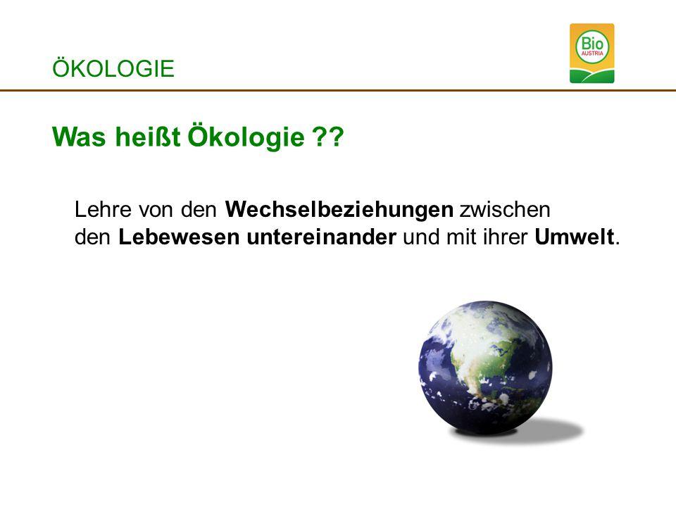 ÖKOLOGIE Was heißt Ökologie ?? Lehre von den Wechselbeziehungen zwischen den Lebewesen untereinander und mit ihrer Umwelt.