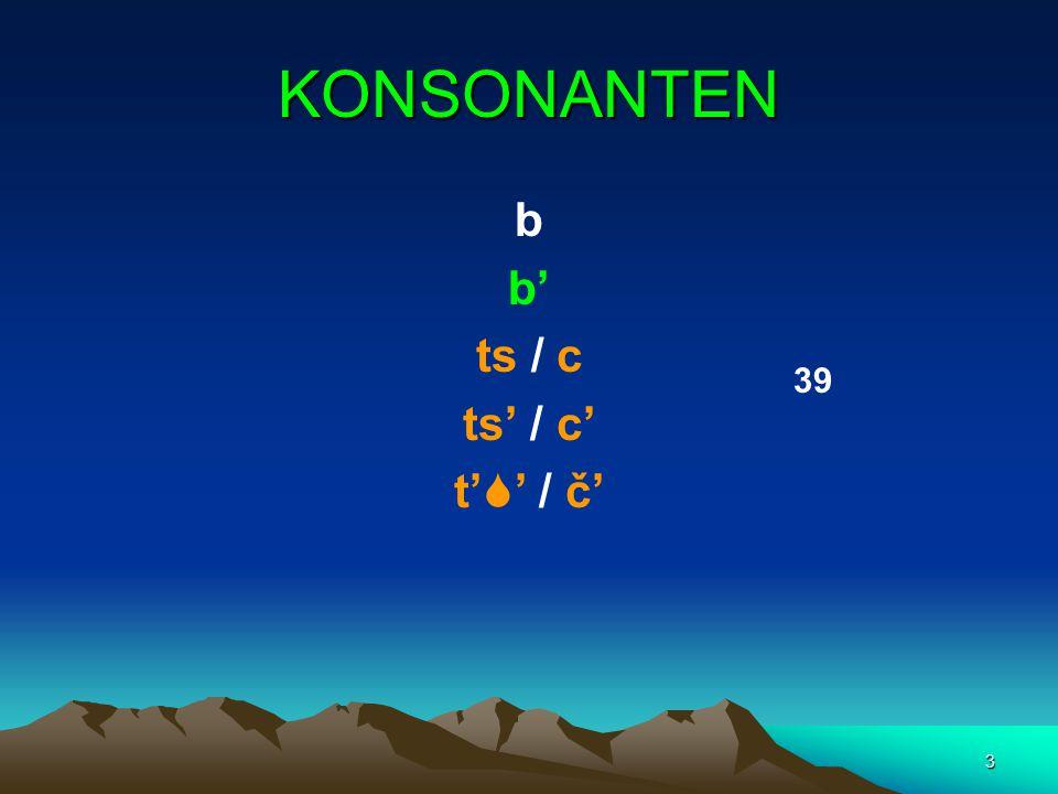 3 KONSONANTEN b b' ts / c ts' / c' t'  ' / č' 3939