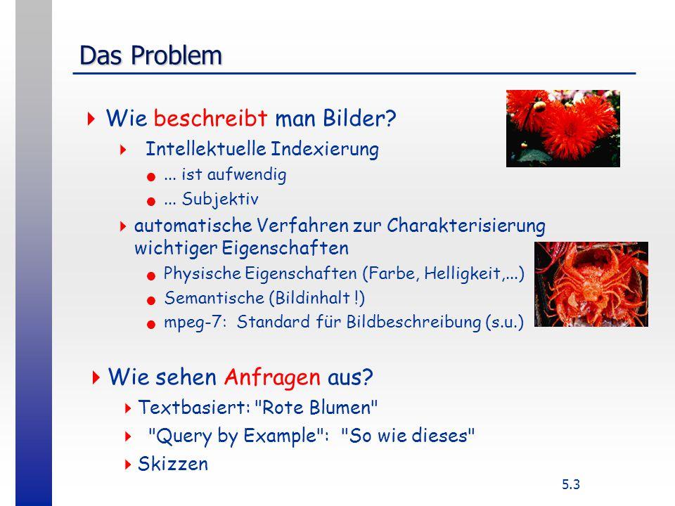 5.3 Das Problem  Wie beschreibt man Bilder.  Intellektuelle Indexierung...