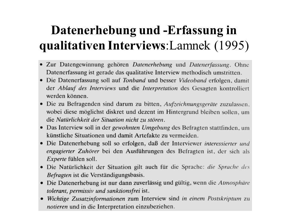 Audiovisuelle Interview-Hilfsmittel Lamnek (1995)