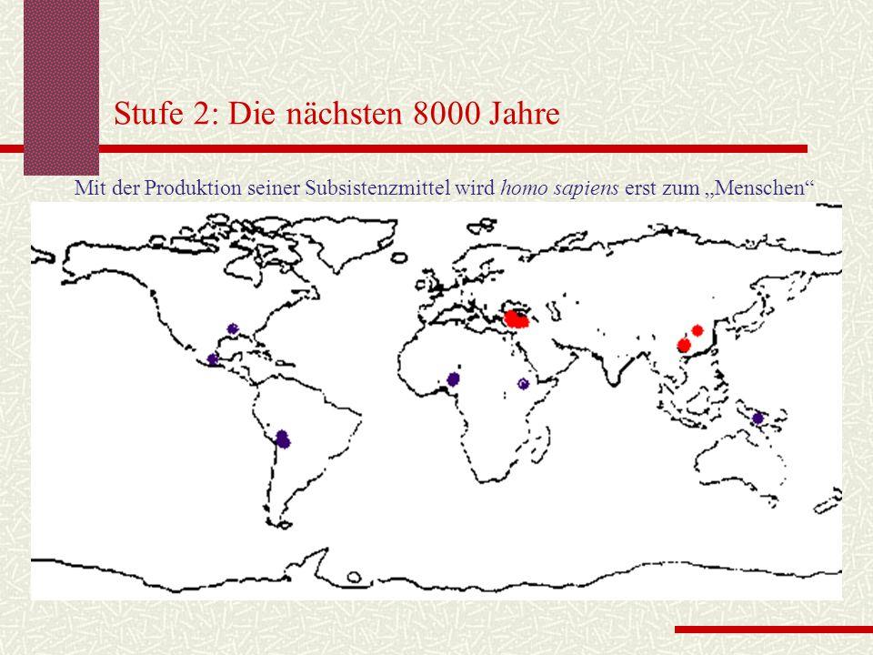 """Stufe 2: Die nächsten 8000 Jahre Mit der Produktion seiner Subsistenzmittel wird homo sapiens erst zum """"Menschen"""""""